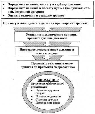 РАЗДЕЛ V - Схемы оказания